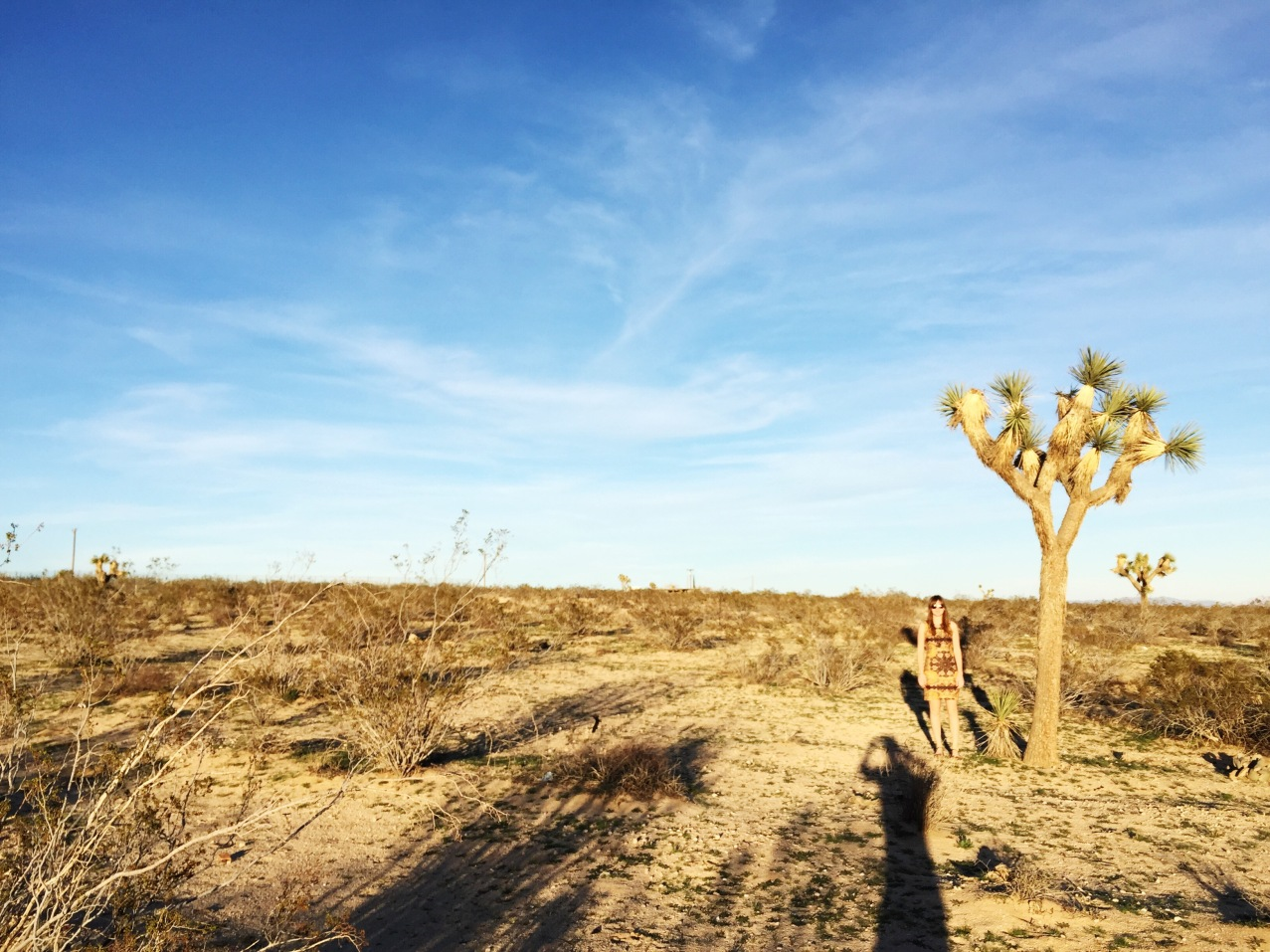Me and Joshua Tree